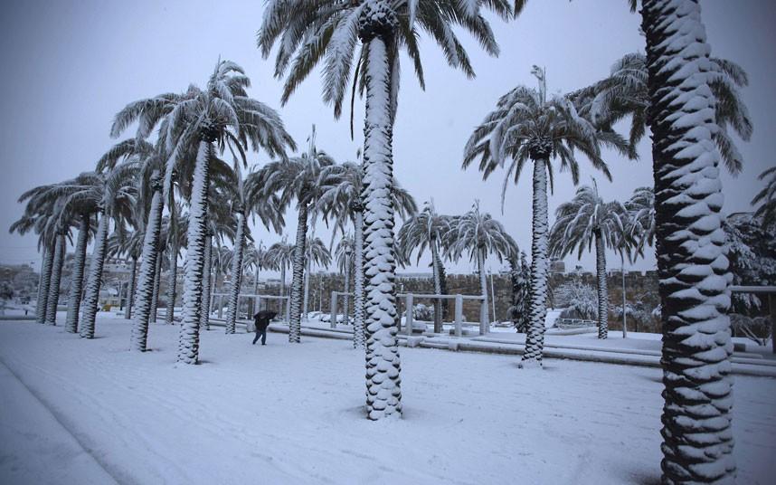 Hazafon, Israel