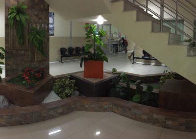Jardineras Hospital IESS